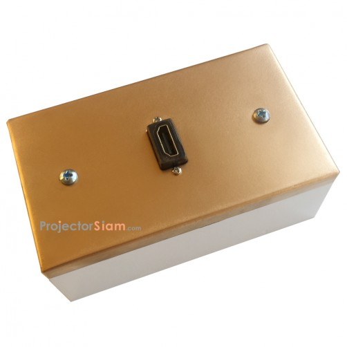 Wall Plate HDMI Gold